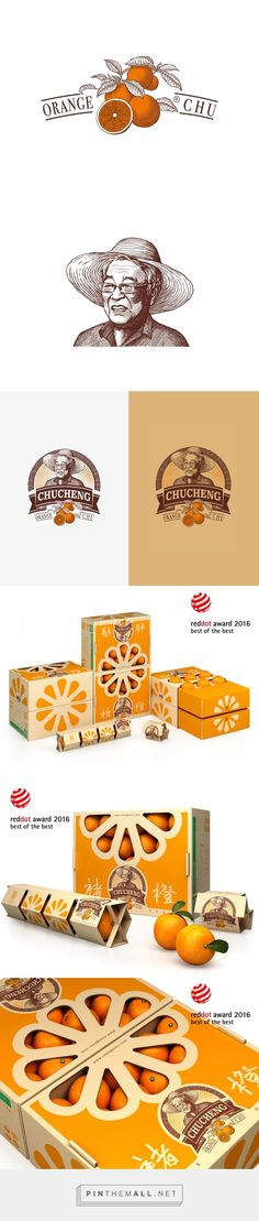 Chu's Orange Packaging and Logo Design by Tiger Pan