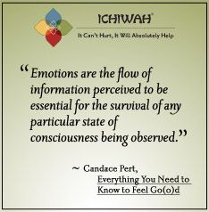 Emotions are the flow of information perceived to be essential for the survival of any particular state of consciousness being observed. – Candace Pert, Everything You Need to Know to Feel Go(o)d