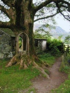 Au pays magique des lutins et des légendes ! #Irlande #Irish #eire #irlande ★ LIEN ARTICLES ★→ http://www.bien-voyager.com/tag/irlande/