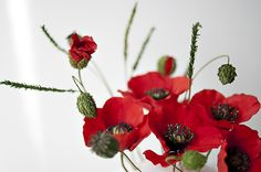 Class Country Chic (Poppy flower and bud with decorative foliage  ah, the beauty of sugar art