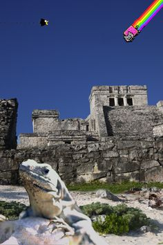 C 21 Tulum ... Mexico | Pinterest | Tulum, Playa Del Carmen and Carmen Dell'Orefice