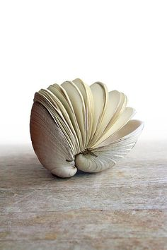 Paper Art, Erica Ekrem, Artist, Clam Shell Book Sculpture, butter clam shells, recycled paper and linen thread coated with bees' wax is used for the stitching