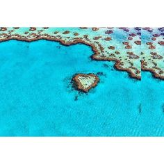 The Great Barrier Reef showing nothing but love from above.. Keep the bond of love mutual and respect this beautiful slice of Aus  Repost from: @chilby_photography by albeco.australia http://ift.tt/1UokkV2