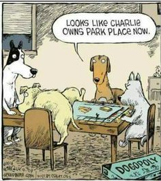 If dogs played Monopoly Funny Animal Memes, Funny Animal Pictures, Funny Dogs, Funny Animals, Funny Memes, Memes Humour, Animal Humour, Pet Memes, Funny Quotes