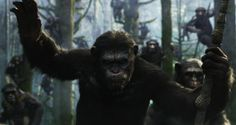 Caesar Gets His Game Face On in Four New Dawn of the Planet of the Apes Posters