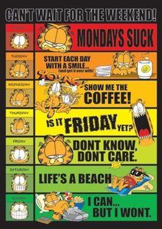 Garfield - days of the week Plakat, Poster på Europosters. Garfield Quotes, Garfield Cartoon, Garfield And Odie, Garfield Comics, Cartoon Fun, Garfield Pictures, Funny Pictures, Funny Pics, Minions
