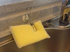 食器洗いのスポンジは清潔に!