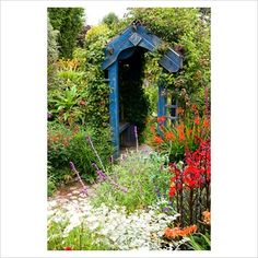 Wooden archway surrounded by a mass of colourful, flowering plants including Crocosmias, Salvia leucantha, Lobelia cardinalis 'Queen Victoria', Helichrysum and Clematis. Poppy Cottage Garden, Roseland Peninsula, Cornwall, UK
