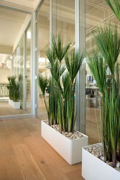 Interieurbeplanting   Kantoor   Planten   Hydrocultuur   Luxe   Onderhoud   Kunstplanten   Potten   Binnenhuisarchitectuur   Inrichting   Bedrijven   Groen   Stijl   Design   Woning   Inspiratie