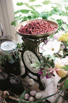 Bom dia! Obrigada por estar visitando o blog do Depósito Santa Mariah. Dentro de nossas casas o que desejamos são delicadezas, entre marido...