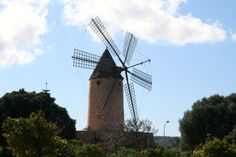 Schon gewußt... auf Mallorca gibt es eine Menge Windmühlen. :-) Entdeckt beim Radeln auf Mallorca im Februar.