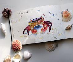 Watercolor sketch in Moleskine sketchbook. Canarian krab