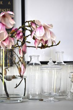 Magnolias should be in bloom every day of the year. Such a sophisticated, yet plain flower.