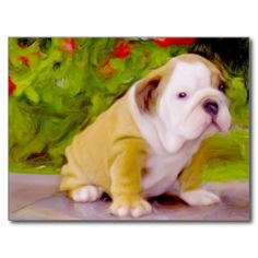 ==> reviews          Bulldog puppy art postcard           Bulldog puppy art postcard We provide you all shopping site and all informations in our go to store link. You will see low prices onThis Deals          Bulldog puppy art postcard Review on the This website by click the button below...Cleck Hot Deals >>> http://www.zazzle.com/bulldog_puppy_art_postcard-239778997701870675?rf=238627982471231924&zbar=1&tc=terrest