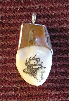 scrimshaw jewelry | An elk ivory pendant with scrimshaw of a bull elk and silver cap, by ...