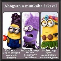 Here are some really awesome Hilarious Minions Jokes . Hope you will love them ALSO READ: Minions Videos ALSO READ: Best 30 Funniest Minions Quotes Minion Gif, Minions Love, Minion Jokes, Minions Quotes, Funny Minion, Purple Minions, Minions Minions, Minions Images, Evil Minions