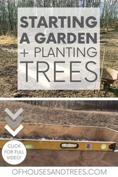 Always dreamed of starting a garden? Me too! Which is why it was the first project we tackled after moving into our sustainable home. Check it out! Sustainable Design, Sustainable Living, Building Raised Beds, Starting A Garden, In The Tree, Planting Seeds, Permaculture, Garden Beds, Check It Out