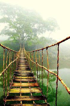 Google+Bridge to nowhere