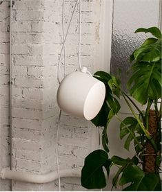 Aim Small Cable & Plug Pendant with Dimmer Switch by Flos