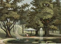 Lithograph by Josias Cornelis Rappard Indonesian Art, Dutch East Indies, Dutch Colonial, Bogor, Wallpaper Pictures, Unique Art, Art History, Past, Buddha Quote