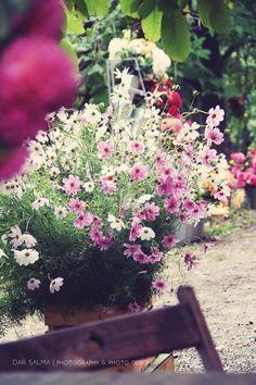 Flower Farm, Floral Wreath, September, Wreaths, Flowers, Plants, Decor, Floral Crown, Decoration