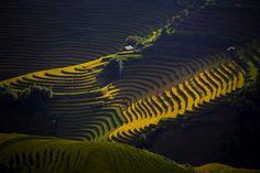"""Morning sun in Vietnam by Surawut Sudha"""