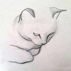 "Saatchi Online Artist Kellas Campbell; Drawing, ""Pencil Cat Drawing"" by SAburns"