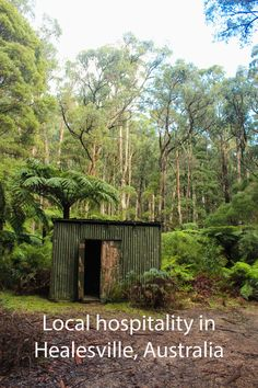 Healesville is not very visited by tourists, but it is a special place and here is why: http://aworldofbackpacking.com/uk/healesville-australien/