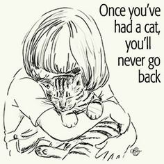 Once you've had a cat, you'll never go back :D
