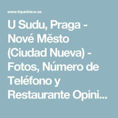 U Sudu, Praga - Nové Město (Ciudad Nueva) - Fotos, Número de Teléfono y Restaurante Opiniones - TripAdvisor