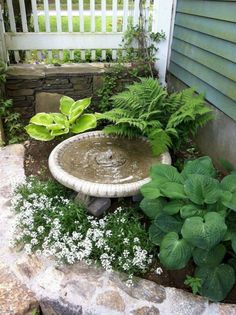 35 Front Yard and Backyard Landscaping Ideas For Beautiful Spring Garden - Homef. 35 Front Yard an Garden Inspiration, Rock Garden, Backyard Landscaping, Patio Garden, Outdoor Gardens, Small Front Yard Landscaping, Garden Design, Cottage Garden, Shade Garden