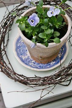 Små hornvioler, en smuk gammel underkop og en krans viklet af birkegrene *smukt*