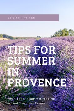 I am in love with Provence. Not only because of the perfumed, vast fields of lavender. But also because of the small villages, the quiet and slow life of the rural South of France. The food, the wine, the art, and history - they all blend perfectly to create one of the most beautiful places in Europe.  #provence #summerroadtrip #roadtripprovence #traveltips #travelphotography