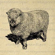 Digital Printable Shropshire Ram Sheep Image Cute Animal Graphic Download Vintage Clip Art Jpg Png Eps 18x18 HQ 300dpi No.3557 @ vintageretroantique.etsy.com #DigitalArt #Printable #Art #VintageRetroAntique #Digital #Clipart #Download