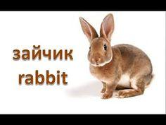 Заєць, як намалювати казкового зайця, #draw, як намалювати кролика олівцем