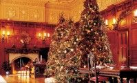 While this space is grand, it still feels cozy and exudes warmth and that's not only because of the yule log burning in the fireplace. Some of that warmth Stay Warm, Warm And Cozy, Big Christmas Tree, Holiday Parties, Holiday Decor, Yule Log, Different Holidays, Deck The Halls, Beautiful Space