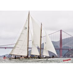 """Seemed like a good day to showcase """"Martha"""" at the Master Mariner Regatta from a few years back. She makes her home in Port Townsend, Washington, now. Did you know that James Cagney owned her from 1934-1943?  #corinthian #sailing #sailor #yachtracing #travel #sailstagram #sports #sailboat #yacht #zeil #zeilen #segeln #vela #renegadesailing #bateau #ggb #goldengatebridge #classicboat #classicyacht #woodenboat #history #hollywood #hollywoodboat #schooner #oldboat #wood"""