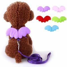Ángel lindo Pet Correas Para Perros y Collares Set Cachorro Lleva para Perros Pequeños Y Gatos Diseño Del Ala Ajustable Para Mascotas Arnés del Perro accesorios