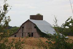 Anthony Cornett's photo of a rural Huntsville, Missouri barn.