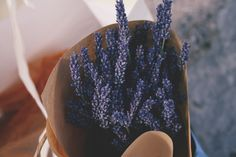 lavender, photograph by melody hansen