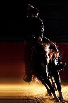 #reining #western #horses  This picture inspires me to follow my dreams