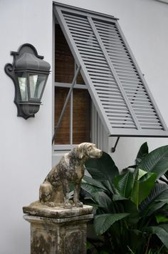 Bermuda shutters are hinged at the top and held open with support rods. They originated in the tropics and were designed to capture ocean breezes and provide shade from the unrelenting sun. (heirloom philosophy: The Language of Shutters)