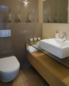 The Reno Coach Passive House Project in Toronto: Bathroom features and Fixtures