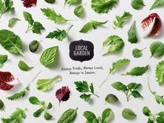 #LocalGarden by Peter #Ladd