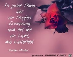 funpot: in-jeder-traene.jpg von Edith funpot: in-jeder-traene.jpg von Edith The Effective Pictures We Offer You About life Quotes thoughts A quality picture can t Faith Quotes, Bible Quotes, Words Quotes, Sayings, Blessed Life Quotes, Daddy I Miss You, Goodbyes Are Not Forever, Life Is Beautiful Quotes, Beautiful Pictures