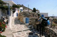 Sikinos island Beautiful Places, Beautiful Pictures, Greek Beauty, Work With Animals, Greece Islands, Santorini, Bellisima, Sidewalk, Exterior