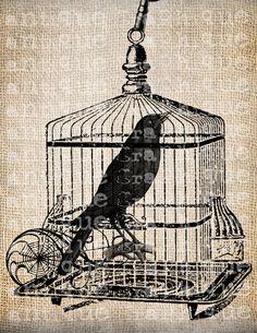 Antique Bird Cage Raven Halloween Illustration Digital Download for Papercrafts, Transfer, Pillows, etc Burlap No 3639. $1.00, via Etsy.