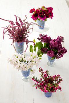 Blue glasses hold magenta flowers