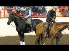Rider Biomechanics with Colleen Kelley- seat fundamentals-- something ALL horsemen should watch