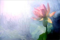 Lotus Flower Paintings / Photographic images using Akvis O… | Flickr Flower Painting Images, Lotus Flower Images, Oil Painting Flowers, Painting & Drawing, Flower Paintings, Lotus Flowers, Canvas Paintings, Paint Filter, Lotus Art